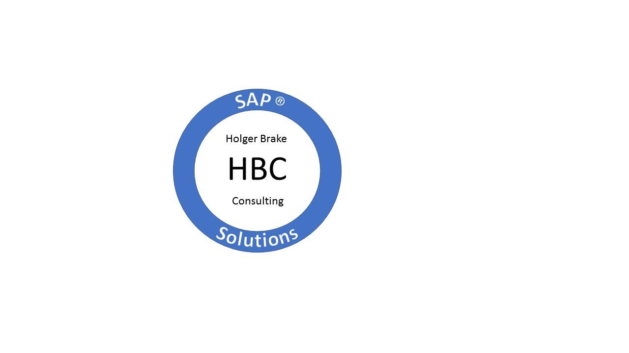 Holger Brake Consulting